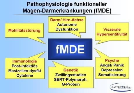symptome bei darmentzündung